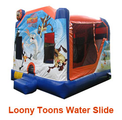 Loony Toons Water Slide