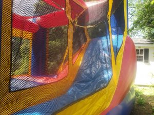 Castle Bounce and Slide Rental