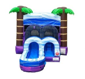 tropical combo inflatable unit
